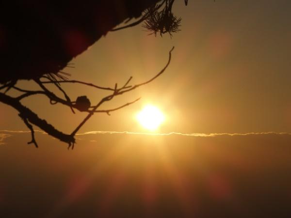 元旦登山と餅と初日の出
