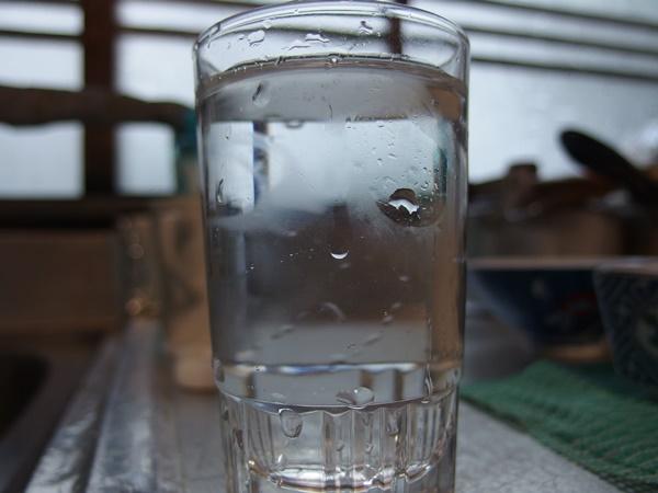 ダイソーの浄水器1