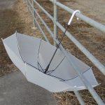 ダイソーの65cm傘。コスパ的にはどんなもんだろうか?