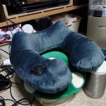 ポンプ内臓のエアー枕(ネックピロー)を買った